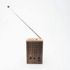 motz mini lautsprecher mit radio klangvolle holzschachtel foerderland. Black Bedroom Furniture Sets. Home Design Ideas