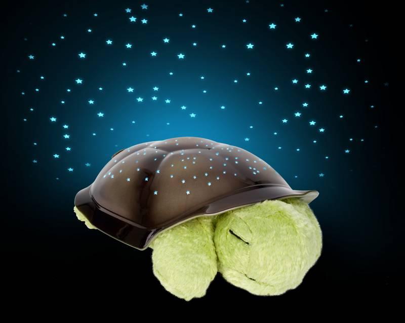 twilight turtle astronomie aus der schildkr te f rderland. Black Bedroom Furniture Sets. Home Design Ideas