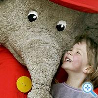 Symbolbild mit Elephant: Das ist nicht Stuckrad-Barre (Bild Keystone/Michael Sohn)