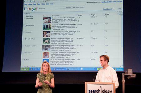 Google Squared: Fertige Datentabellen direkt von Google - mehr oder weniger... (Alle Bilder © ps)