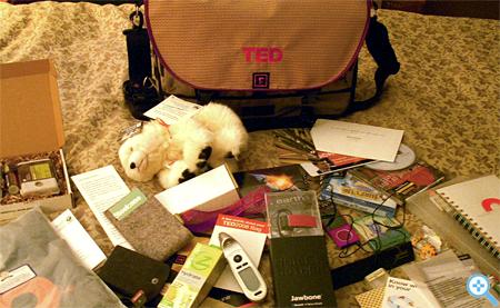 TED Gift bag