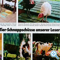 Tierwelt-Leserfotos