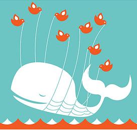 Der Twitter-Failwhale