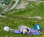 Nickerchen auf einer Bergwiese
