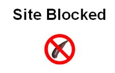 firefox-leechblock-blocked